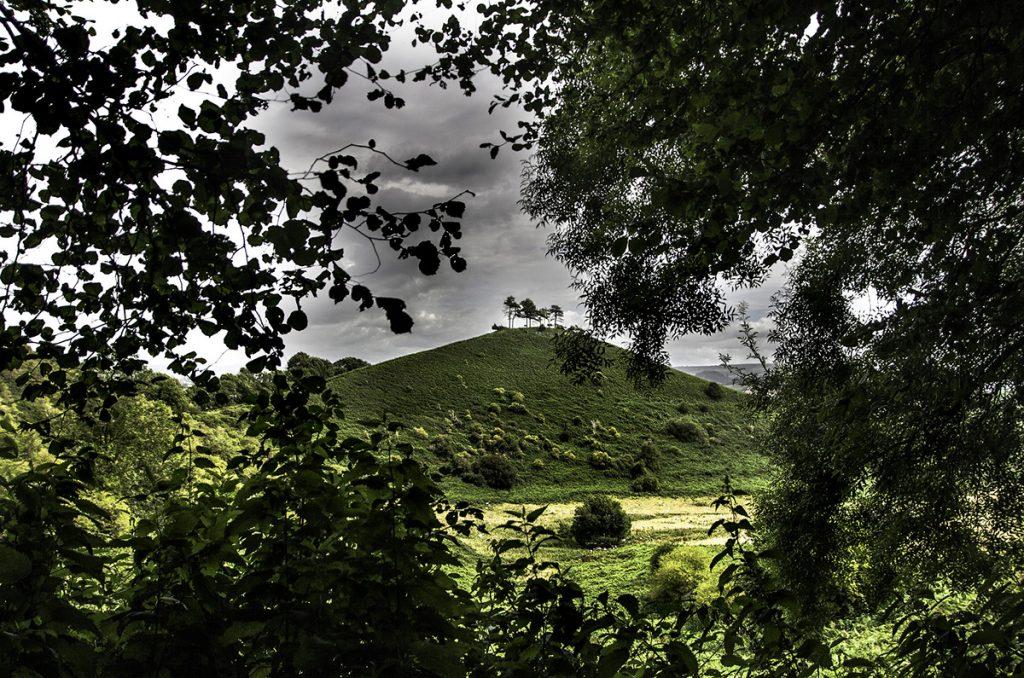 colme's hill, West Dorset